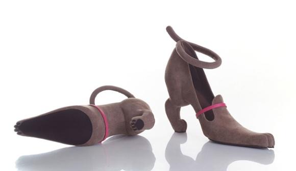 zapatos perrito