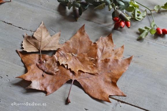 hojas secas, etiquetas