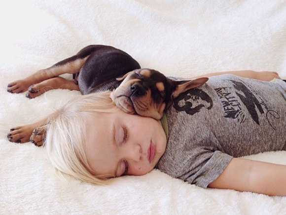 bebe y perro